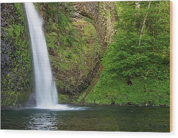 Wood Print featuring the photograph Gushing Horsetail Falls by Greg Nyquist