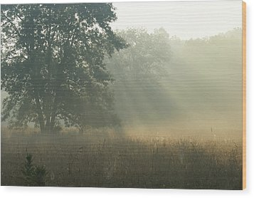 Guten Morgen Wood Print by Heidi Poulin