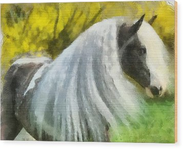 Wood Print featuring the painting Gypsy by Elizabeth Coats