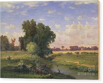 Hackensack Meadows - Sunset Wood Print by George Snr Inness