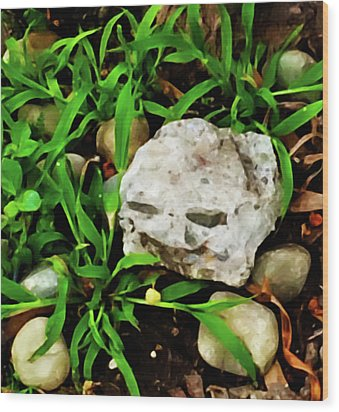 Haight Ashbury Smiling Rock Wood Print