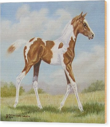 Half Arabian Pinto Filly Wood Print by Dorothy Coatsworth