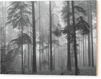 Wood Print featuring the photograph Half Century by Mary Amerman