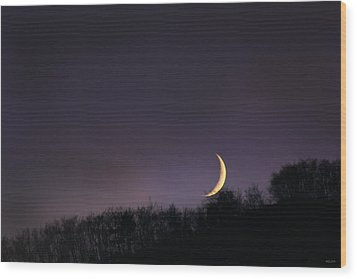 Wood Print featuring the photograph Half Moon by Martina  Rathgens