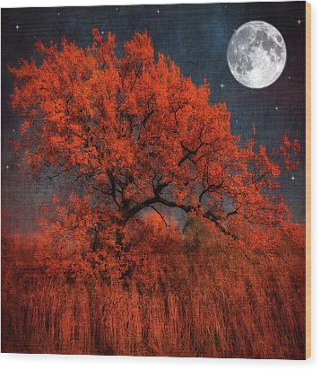 Halloween Color Wood Print by Philippe Sainte-Laudy Photography