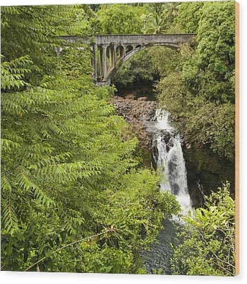 Hamakua Bridge Wood Print by Charlie Osborn