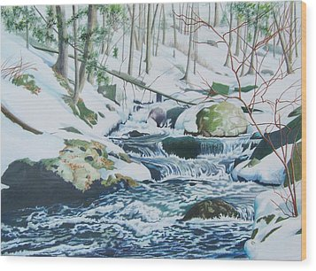 Wood Print featuring the mixed media Hamburg Mountain Stream by Constance Drescher