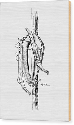 Hame Wood Print by Bob Hallmark