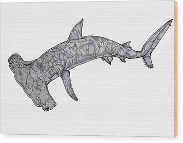 Hammer Head Shark Wood Print by Nick Gustafson