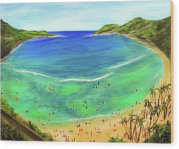 Hanauma Bay Hawaiian #336 Wood Print by Donald k Hall