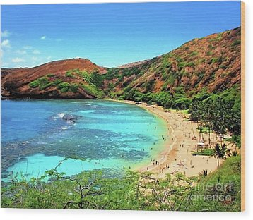 Hanauma Bay Nature Preserve Wood Print