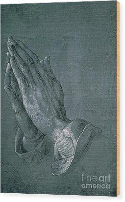 Hands Of An Apostle Wood Print by Albrecht Durer