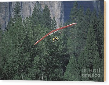 Wood Print featuring the photograph Hang Glider In Yosemite by Stan and Anne Foster