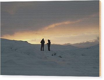 Wood Print featuring the photograph Hanging Around Iceland by Dubi Roman