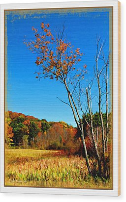Wood Print featuring the photograph Hanging On To Autumn by Joan  Minchak