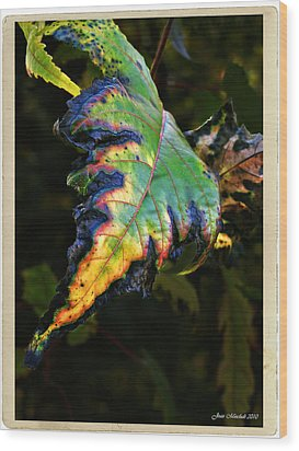 Wood Print featuring the photograph Hanging Out by Joan  Minchak