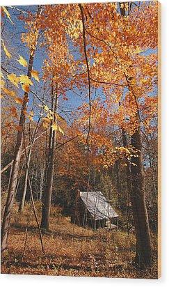 Hannah Cabin Wood Print by Alan Lenk