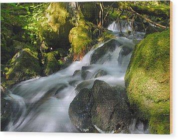 Hanson Falls Wood Print by Larry Ricker