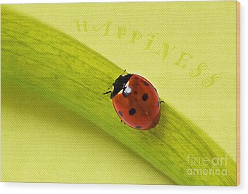 Happiness Wood Print by Angela Doelling AD DESIGN Photo and PhotoArt