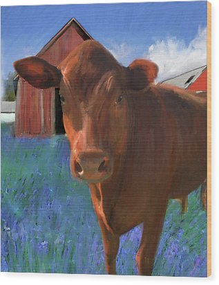 Happy Cow West Marin  Wood Print