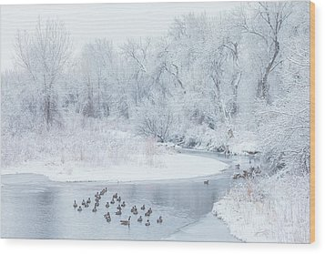 Wood Print featuring the photograph Happy Geese by Darren White