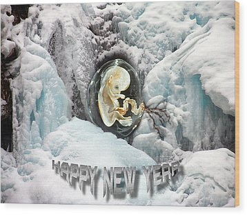 Happy New Year Wood Print by Otto Rapp