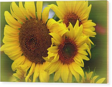 Wood Print featuring the photograph Happy Sunflowers by Kay Novy