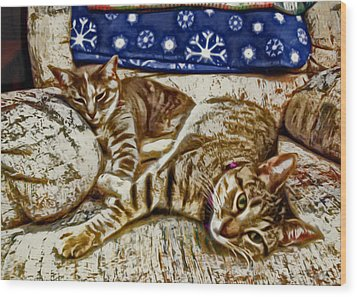 Happy Together Wood Print by David G Paul