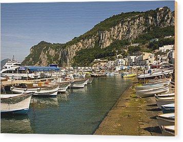 Harbor Capri Italy Wood Print by Xavier Cardell