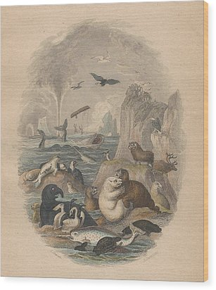 Harbor Wood Print by Rob Dreyer