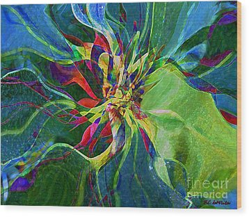 Harlequin Poinsettia Wood Print by RC DeWinter