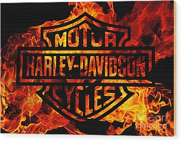 Harley Davidson Logo Flames Wood Print by Randy Steele