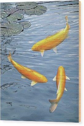 Wood Print featuring the photograph Harmony - Golden Koi by Gill Billington