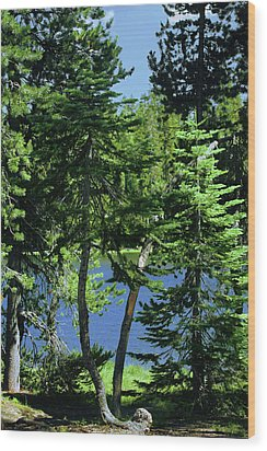 Harmony In Green And Blue - Manzanita Lake - Lassen Volcanic National Park Ca Wood Print by Christine Till