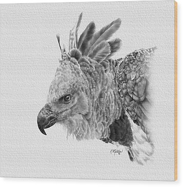 Harpy Eagle Wood Print by Kathie Miller