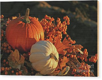 Harvest Colors Wood Print by Sandra Cunningham