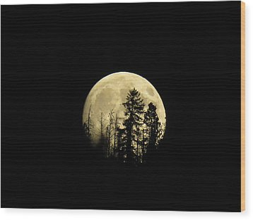 Harvest Moon Wood Print by Karen Shackles