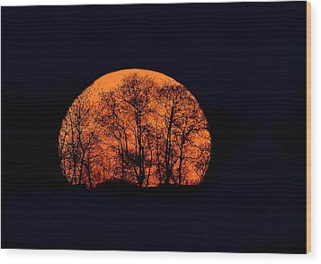 Harvest  Moon Rising Wood Print