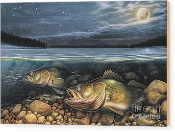 Harvest Moon Walleye 1 Wood Print by JQ Licensing