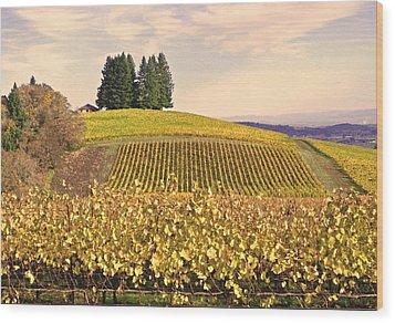 Harvest Time In A Vineyard Wood Print by Margaret Hood