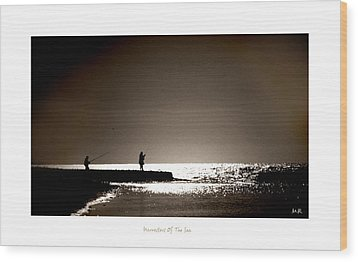 Wood Print featuring the photograph Harvester Of The Sea by Martina  Rathgens