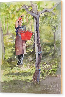 Wood Print featuring the painting Harvesting Anna's Grapes by Bonnie Rinier