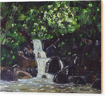 Hatcher Pass Creek Wood Print