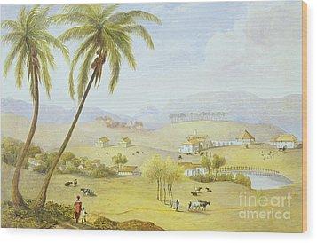 Haughton Court - Hanover Jamaica Wood Print by James Hakewill