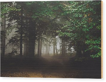 Haunted Forest #2 Wood Print