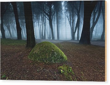 Wood Print featuring the photograph Haunting by Jorge Maia
