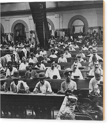Havana Cuba - Cigars Being Rolled - C 1903 Wood Print