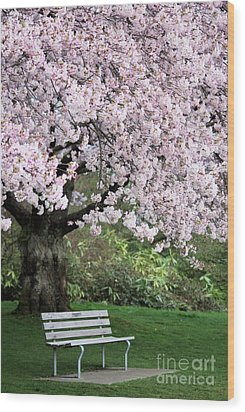 Wood Print featuring the photograph Have A Seat by Victor K