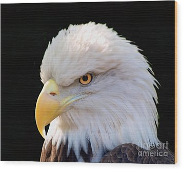 Wood Print featuring the photograph Have My Eye On You by Ken Frischkorn