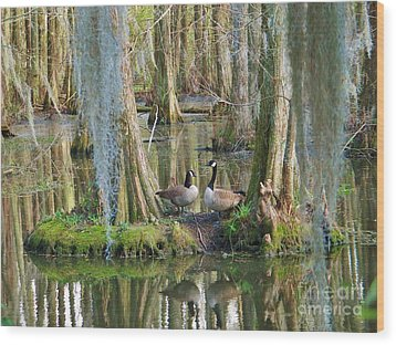 Haven Wood Print by Sheila Ping